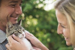Pärchen mit Katze